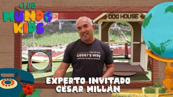César Millán enseña a Boots un truco, ve y aprende cómo hacerlo con tu mascota | Club Mundo Kids